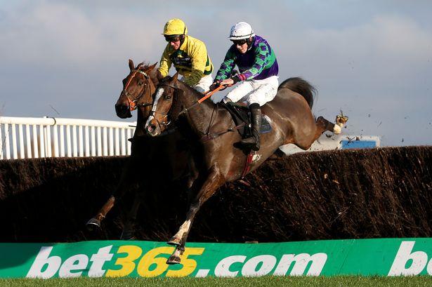 bet365-horse-racing